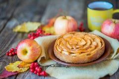 Πίτα της Apple σε μια ξύλινη σύσταση με τα κόκκινα μούρα Στοκ Φωτογραφία
