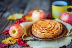Πίτα της Apple σε μια ξύλινη σύσταση με τα κόκκινα μούρα Στοκ Εικόνα