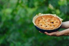 Πίτα της Apple στα χέρια του μάγειρα Στοκ Εικόνες