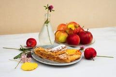 Πίτα της Apple - strudel Στοκ εικόνες με δικαίωμα ελεύθερης χρήσης