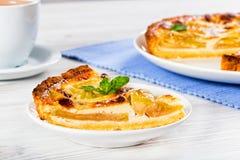 Πίτα τυριών της Apple που ψεκάζεται με τη ζάχαρη τήξης Στοκ φωτογραφίες με δικαίωμα ελεύθερης χρήσης