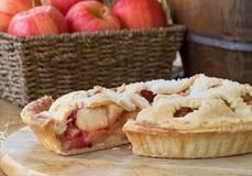 Πίτα των βακκίνιων της Apple Στοκ εικόνες με δικαίωμα ελεύθερης χρήσης