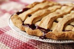 πίτα στοκ φωτογραφίες