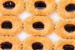 πίτες μπισκότων βακκινίων Στοκ φωτογραφίες με δικαίωμα ελεύθερης χρήσης