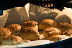 Πίτες τυριών Στοκ εικόνες με δικαίωμα ελεύθερης χρήσης
