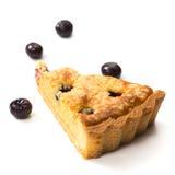 Πίτες φρούτων βακκινίων Στοκ εικόνες με δικαίωμα ελεύθερης χρήσης