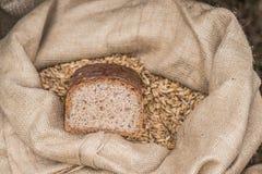 Πίτουρο ψωμιού Στοκ φωτογραφία με δικαίωμα ελεύθερης χρήσης