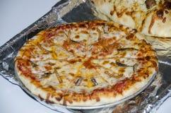 Πίτσα ζωύφιου Στοκ εικόνα με δικαίωμα ελεύθερης χρήσης