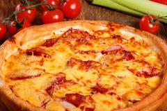 Πίτσα με το σαλάμι, το pastrami, το ζαμπόν και το τυρί Στοκ φωτογραφίες με δικαίωμα ελεύθερης χρήσης