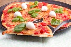 Πίτσα με το mozarella και το βασιλικό Στοκ φωτογραφία με δικαίωμα ελεύθερης χρήσης