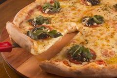 Πίτσα σαρδελλών Στοκ εικόνα με δικαίωμα ελεύθερης χρήσης
