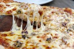 Πίτσα τυριών στο πιάτο Στοκ Φωτογραφία