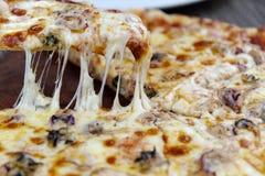 Πίτσα τυριών στο πιάτο Στοκ Εικόνες