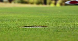 Παίζοντας γκολφ παικτών γκολφ απόθεμα βίντεο
