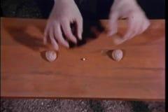 Παίζοντας παιχνίδι ατόμων με τα κελύφη και μάρμαρο σε έναν ξύλινο πίνακα απόθεμα βίντεο