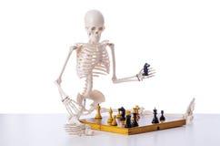 Παίζοντας παιχνίδι σκακιού σκελετών στο λευκό Στοκ φωτογραφίες με δικαίωμα ελεύθερης χρήσης