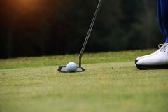 Παίκτης γκολφ που βάζει τη σφαίρα γκολφ στο πράσινο γκολφ Στοκ Εικόνα