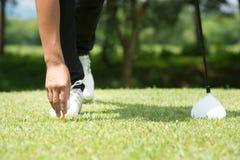 Παίκτης γκολφ που τοποθετεί τη σφαίρα γκολφ στο γράμμα Τ μια ηλιόλουστη ημέρα στη σειρά μαθημάτων Στοκ Φωτογραφία
