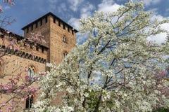 Παβία, Ιταλία: το μεσαιωνικό κάστρο στην άνοιξη στοκ εικόνες με δικαίωμα ελεύθερης χρήσης