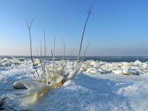 Παγάκια πάγου στην ακτή λιμνών στοκ φωτογραφίες