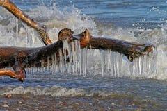 Παγάκια που πλαισιώνονται από την κυματωγή Στοκ Εικόνες