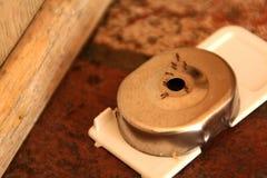 παγίδα μυρμηγκιών στοκ φωτογραφία με δικαίωμα ελεύθερης χρήσης