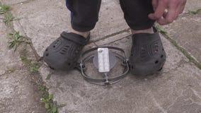 Παγίδα για τα ζώα με τις ταμπλέτες απόθεμα βίντεο