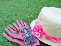 Παγίδα γοπχερ με Lady& x27 κήπος & x28 του s 4& x29  στοκ εικόνα