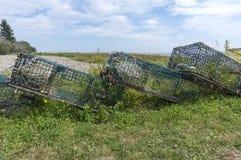 Παγίδες αστακών που συσσωρεύονται χερσαίες εκτός από τον κόλπο Fundy, Νιού Μπρούνγουικ Στοκ Εικόνες