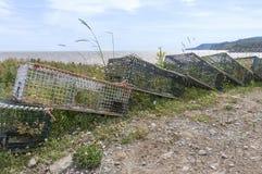 Παγίδες αστακών που συσσωρεύονται χερσαίες εκτός από τον κόλπο Fundy, Νιού Μπρούνγουικ, Καναδάς Στοκ εικόνα με δικαίωμα ελεύθερης χρήσης