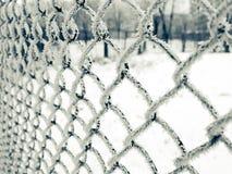 παγετός καθαρός Στοκ φωτογραφία με δικαίωμα ελεύθερης χρήσης