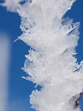 παγετός κρυστάλλων Στοκ Εικόνες