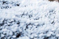 Παγετός στην ανάπτυξη στους βράχους Στοκ Φωτογραφία