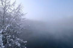 Παγετός στους κλάδους των δέντρων και τη χλόη στο υπόβαθρο μιας λίμνης Στοκ εικόνες με δικαίωμα ελεύθερης χρήσης