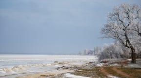 Παγετός. Στοκ φωτογραφίες με δικαίωμα ελεύθερης χρήσης