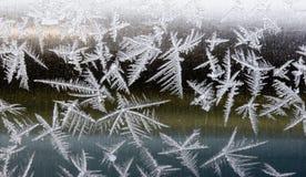 παγετός Στοκ φωτογραφίες με δικαίωμα ελεύθερης χρήσης