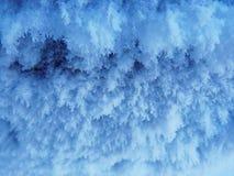 παγετός Στοκ Φωτογραφίες