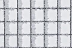 Παγετός Hoar στο φράκτη καλωδίων Στοκ εικόνες με δικαίωμα ελεύθερης χρήσης