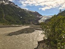παγετώνας εξόδων της Αλάσκας Στοκ Φωτογραφία