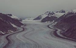 Παγετώνας σολομών Στοκ Φωτογραφία
