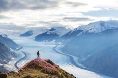 Παγετώνας σολομών Στοκ φωτογραφία με δικαίωμα ελεύθερης χρήσης
