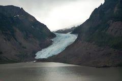 Παγετώνας σολομών Στοκ Εικόνες