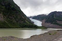 Παγετώνας σολομών Στοκ φωτογραφίες με δικαίωμα ελεύθερης χρήσης