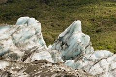 παγετώνας 01 αλεπούδων Στοκ φωτογραφία με δικαίωμα ελεύθερης χρήσης