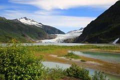 παγετώνας Στοκ Εικόνα