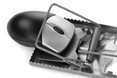 Παγιδευμένο ποντίκι υπολογιστών Στοκ Εικόνες