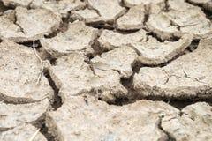 Παγκόσμια αύξηση της θερμοκρασίας λόγω του φαινομένου του θερμοκηπίου, ξηρασία στοκ εικόνες