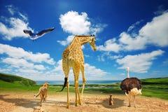 Παγκόσμια αύξηση της θερμοκρασίας λόγω του φαινομένου του θερμοκηπίου - μετανάστευση ζώων Στοκ Εικόνες