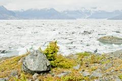 παγκόσμια αύξηση της θερμ&omic Στοκ Εικόνα