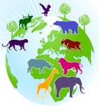 παγκόσμιος ζωολογικός  Στοκ Φωτογραφίες